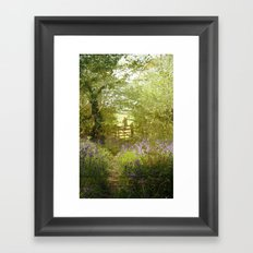 bluebell meadows Framed Art Print