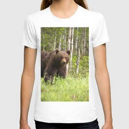Amazing Huge Adult Grizzly Bear Strolling Proudly Across Wood Clearing Ultra HD T-shirt