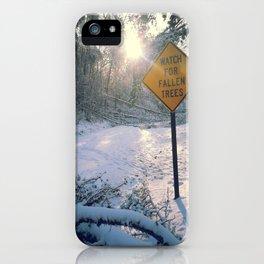 Fallen trees iPhone Case