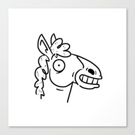 Mr Horse Canvas Print