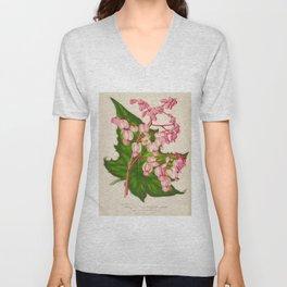 Begonia Verschaffeltii Vintage Botanical Floral Flower Plant Scientific Illustration Unisex V-Neck