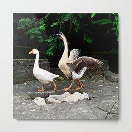 Cute Geese Metal Print