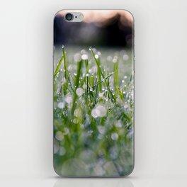 Dew Laden Grass 2 iPhone Skin