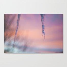 Pink February Canvas Print