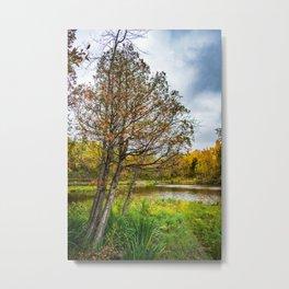 Lonely Tree in Billings Park Metal Print