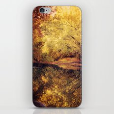 Wisconsin River iPhone & iPod Skin