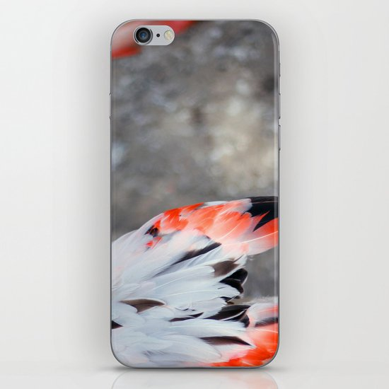 Plumage iPhone & iPod Skin