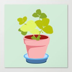 Young Strawberry #2 Canvas Print