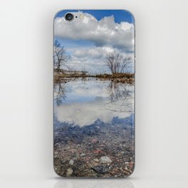 Water and Sky reflections iPhone Skin