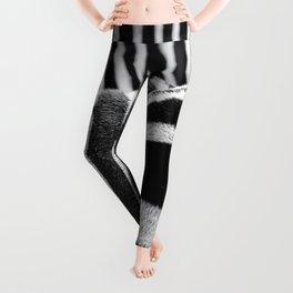Zebra Stripes Leggings