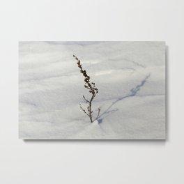 Snow drift Metal Print