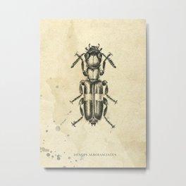 Beetle pencil drawing Metal Print