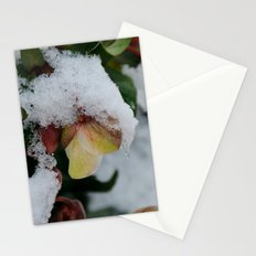 I promise you Spring Stationery Cards