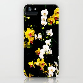 Orchid Celebration iPhone Case