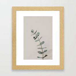 Stretch: minimalist botanical eucalyptus Framed Art Print