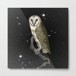 Owl in the Universe Metal Print