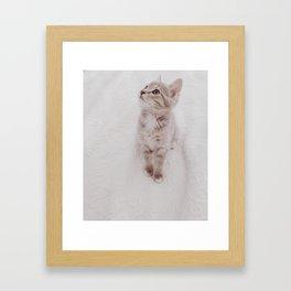 Good Morning Kitty Framed Art Print
