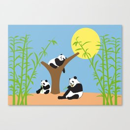 Panda bears with bamboo Canvas Print