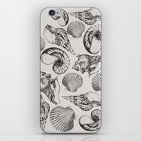 shells iPhone & iPod Skins featuring shells by sustici