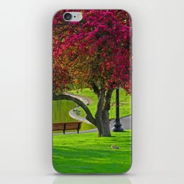 The park  iPhone Skin