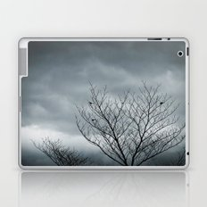 Your Coldness Laptop & iPad Skin