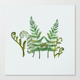 Fern Collage with Light Blue Gray Background Canvas Print