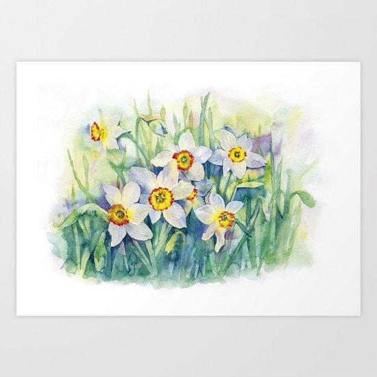 Daffodils watercolor illustration Art Print