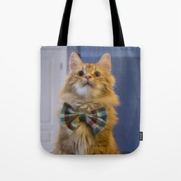 Sir Pudding of Butterscotch Tote Bag