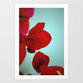 Flower flash Art Print