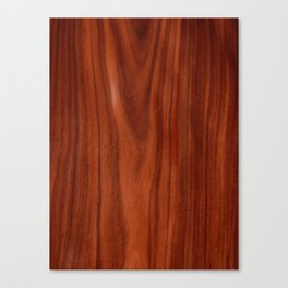 Beautiful red wood design Canvas Print
