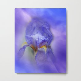 Iris and blue sky Metal Print
