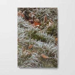Frozen Grass in Ice Metal Print
