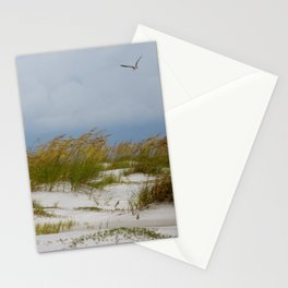 Sea Oats On Anna Maria Island (1) Stationery Cards