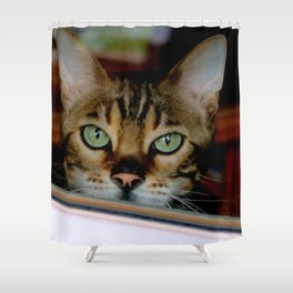 Just A Bit Nose-y Shower Curtain