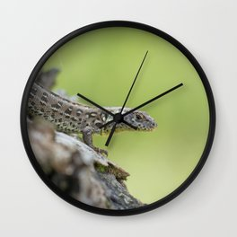 Lizard in Nature Wall Clock