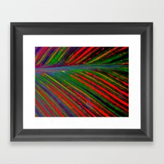 Tropicanna Framed Art Print