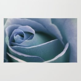 for the usual designers: another winter rose Rug