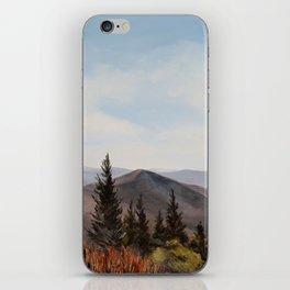 Reservoir iPhone Skin