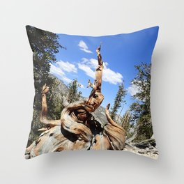 Oldest living things on earth Throw Pillow