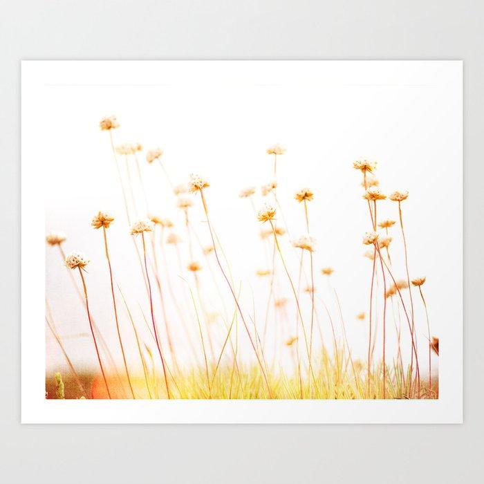 Beach Flora Art Print