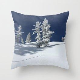 Bluebird Day Throw Pillow