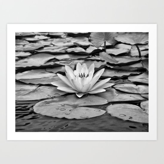 The Subtlety of Peace Art Print
