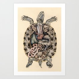 Anatomical Dissection of a Red Eared Terrapin Art Print