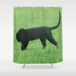 Prowling Around Shower Curtain