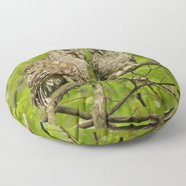 Mom and baby barred owl Floor Pillow