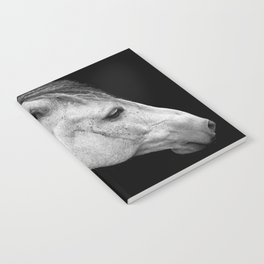 Casper   Horse Photography   Animal Art   Minimalism   Nature   black-and-white Notebook