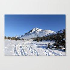 Glen Alps Canvas Print