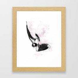 Lapwing song flight Framed Art Print