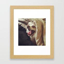 Doggy Says Hello Framed Art Print