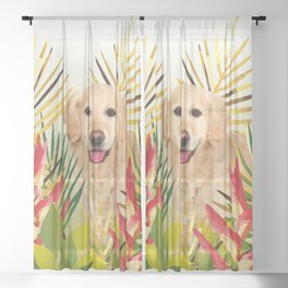 Golden Retriever Dog Garden Sheer Curtain